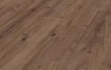 LP Dub brown 8.0 mm trieda 32 (D3531)