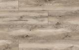LP ARTEO CLASSEN Dub Indianapolis 10.0 mm XL 49752 trieda 33 (53741)