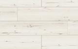 LP ARTEO CLASSEN Dub Famara 8.0 mm XL 49777 trieda 33 (53725)