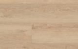 TARKETT clik ULTIMATE Stylish Oak natural 24775000